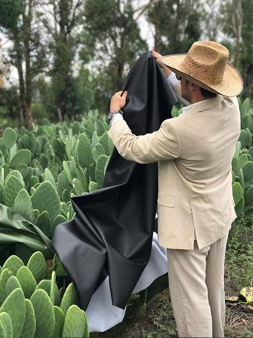 Leather made from plants?