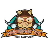 Where Pigs Fly