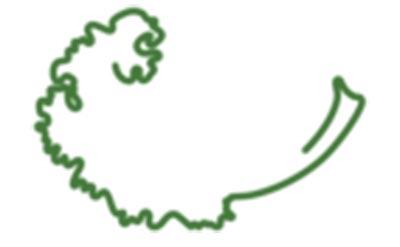 Greenleaf Bag