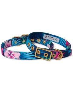 Animals in Charge Cafe Dog Collar - Tropical Flower + Brass | Flora & Fauna Australia