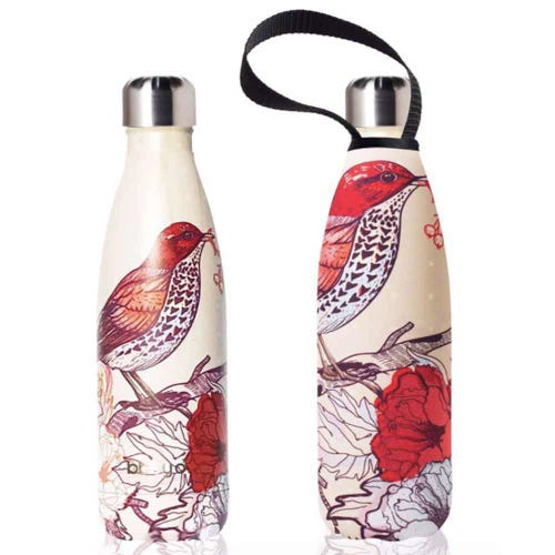 BBBYO Stainless Steel 500ml Bottle + Cover - Air Bird