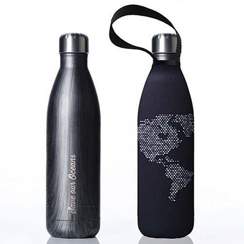 BBBYO Stainless Steel 750ml Bottle + Carry Cover - Globe