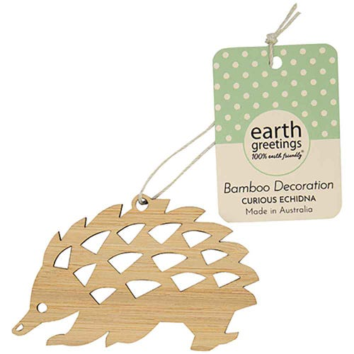 Earth Greetings Bamboo Decoration - Curious Echidna