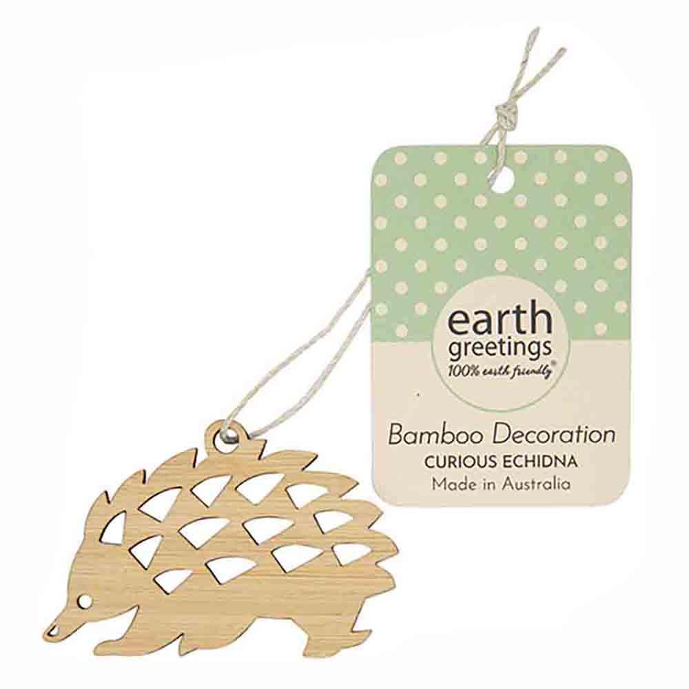 Earth Greetings Mini Bamboo Decoration - Curious Echidna