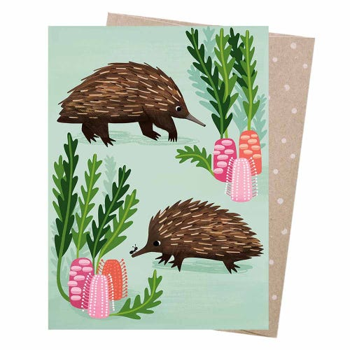 Earth Greetings Blank Card - Short-Beaked Echidnas