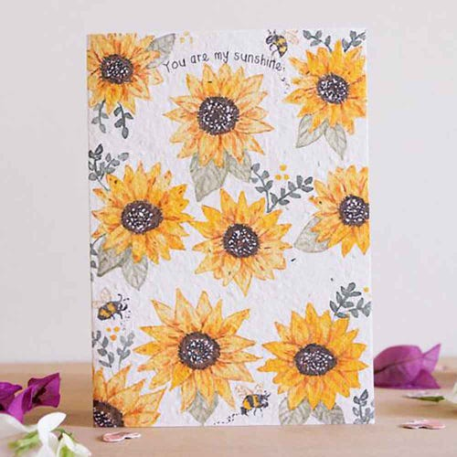 Hello Petal Seeded Card - You Are My Sunshine Blooming Card