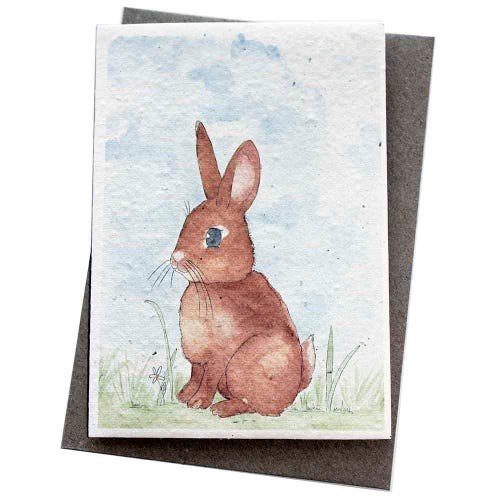 Hello Petal Seeded Card - Little Bunny