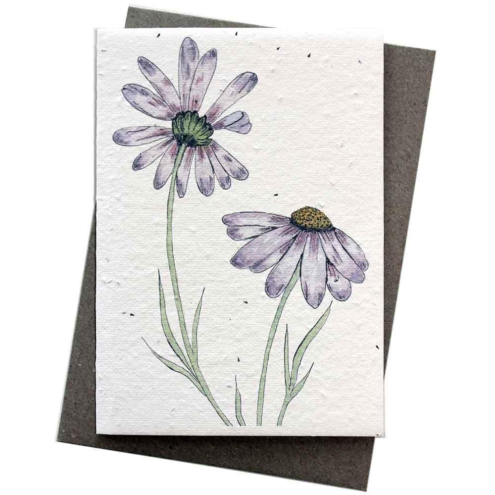 Hello Petal Seeded Card - Daisies