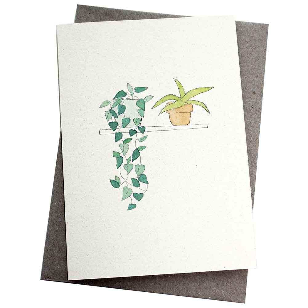 Hello Petal Seeded Card - Plants On A Shelf