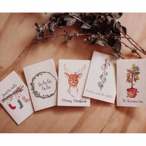 Hello Petal Christmas Card - Mini Cards 5 Pack