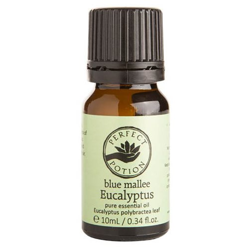 Perfect Potion Pure Essential Oil - Blue Mallee Eucalyptus (10ml)