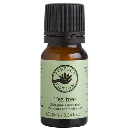 Perfect Potion Pure Essential Oil - Tea Tree (10ml)