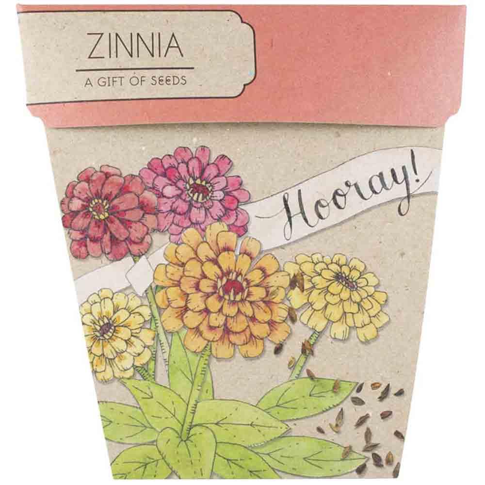 Sow n Sow Gift of Seeds - Hooray Zinnia