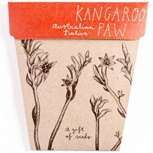 Sow n Sow Gift of Seeds - Kangaroo Paw