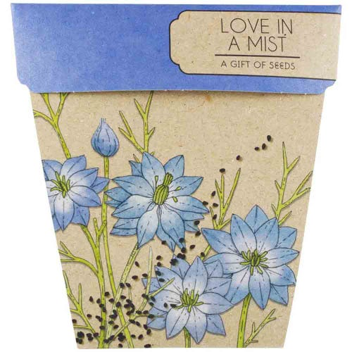 Sow n Sow Gift of Seeds - Love In A Mist