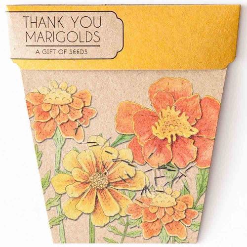 Sow n Sow Gift of Seeds - Marigolds