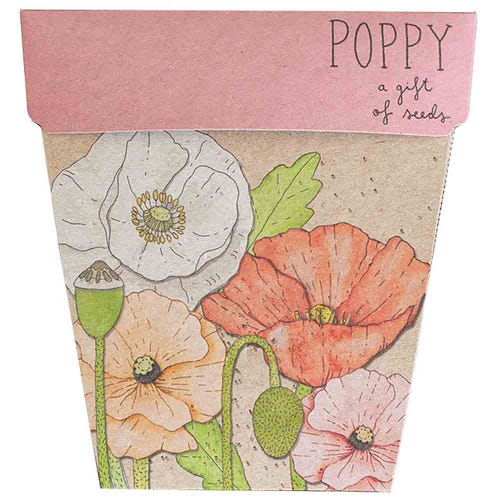 Sow n Sow Gift of Seeds - Poppy