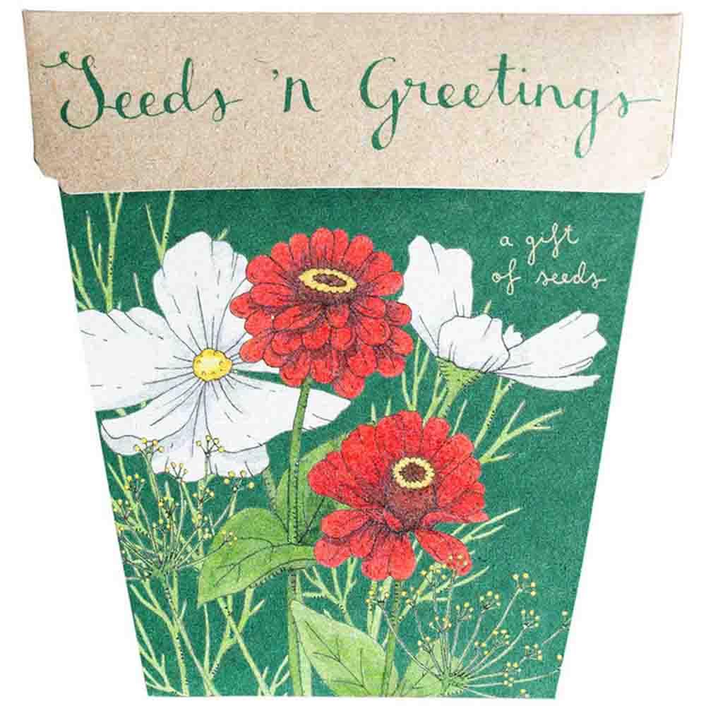 Sow n Sow Gift of Seeds - Seeds 'n Greetings