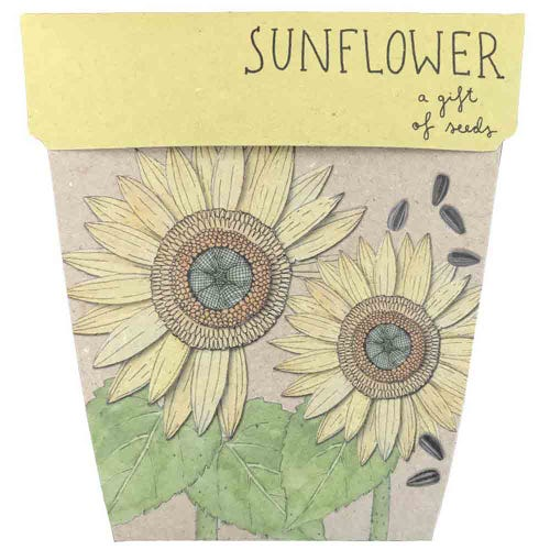 Sow n Sow Gift of Seeds - Sunflower