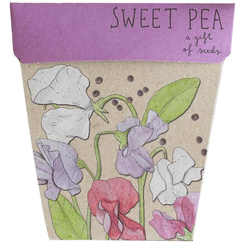 Sow n Sow Gift of Seeds - Sweet Pea