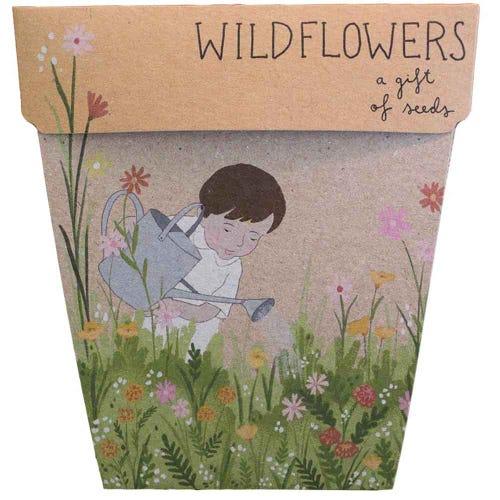 Sow n Sow Gift of Seeds - Wildflowers