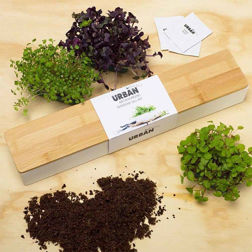 Urban Greens Microgreens Windowsill Grow Kit