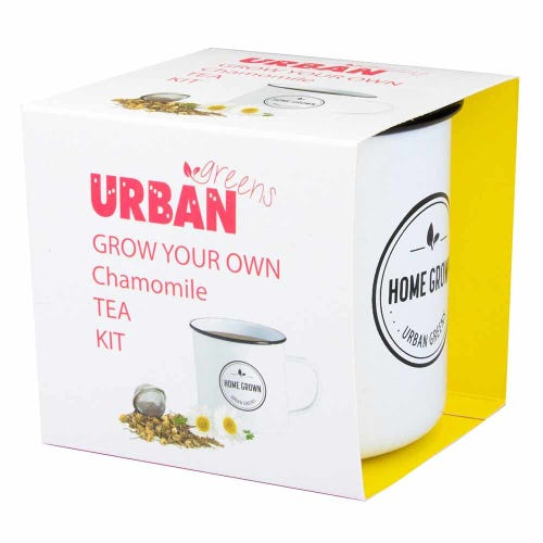 Urban Greens Grow Your Own Tea - Chamomile