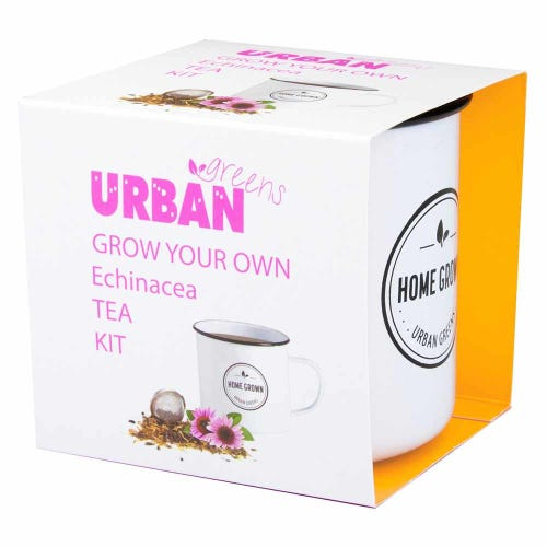 Urban Greens Grow Your Own Tea - Echinacea