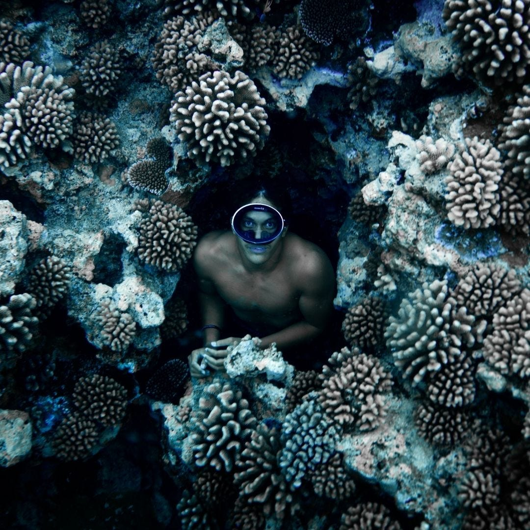 Climate Change Coral Reefs & Tourism