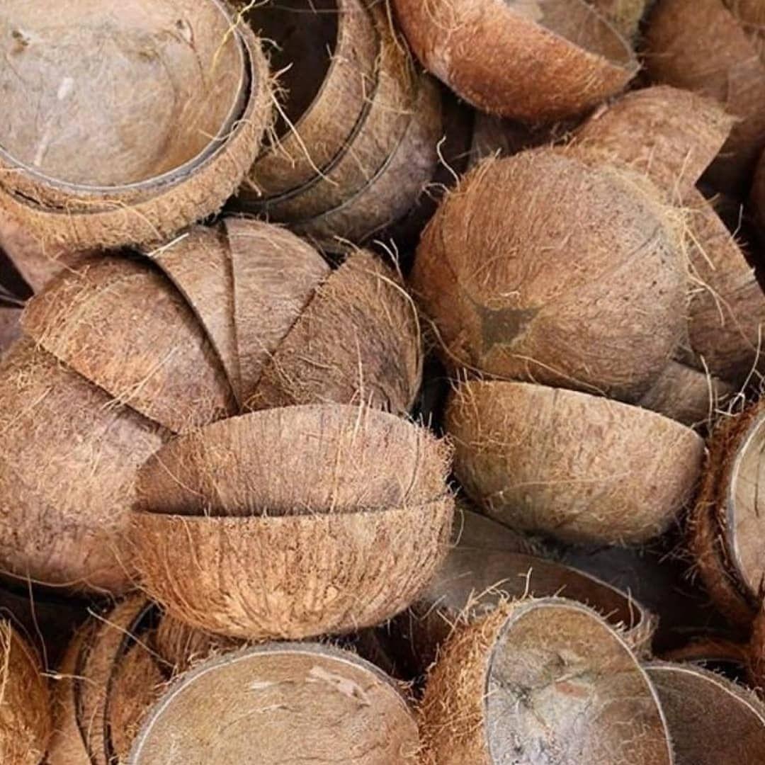 Green + Kind Coconut Bowls