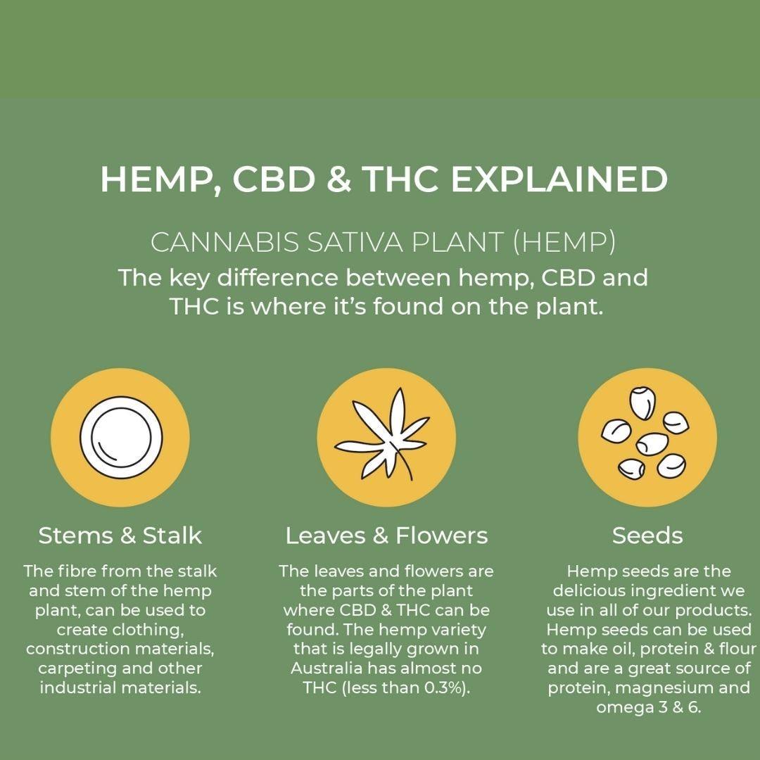 Hemp, CBD and TCH explained