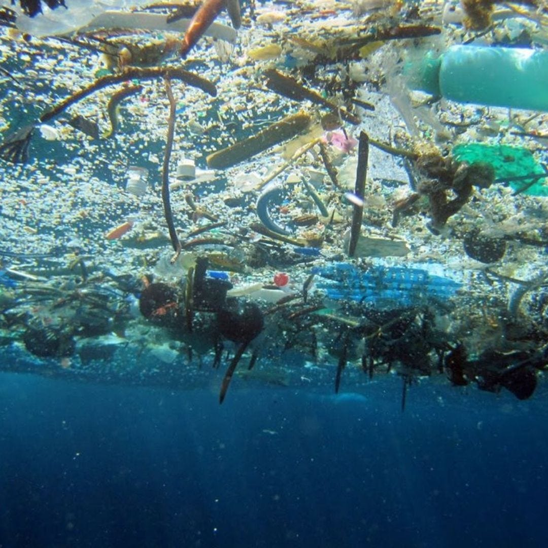 Great Pacfifc Garbage Patch