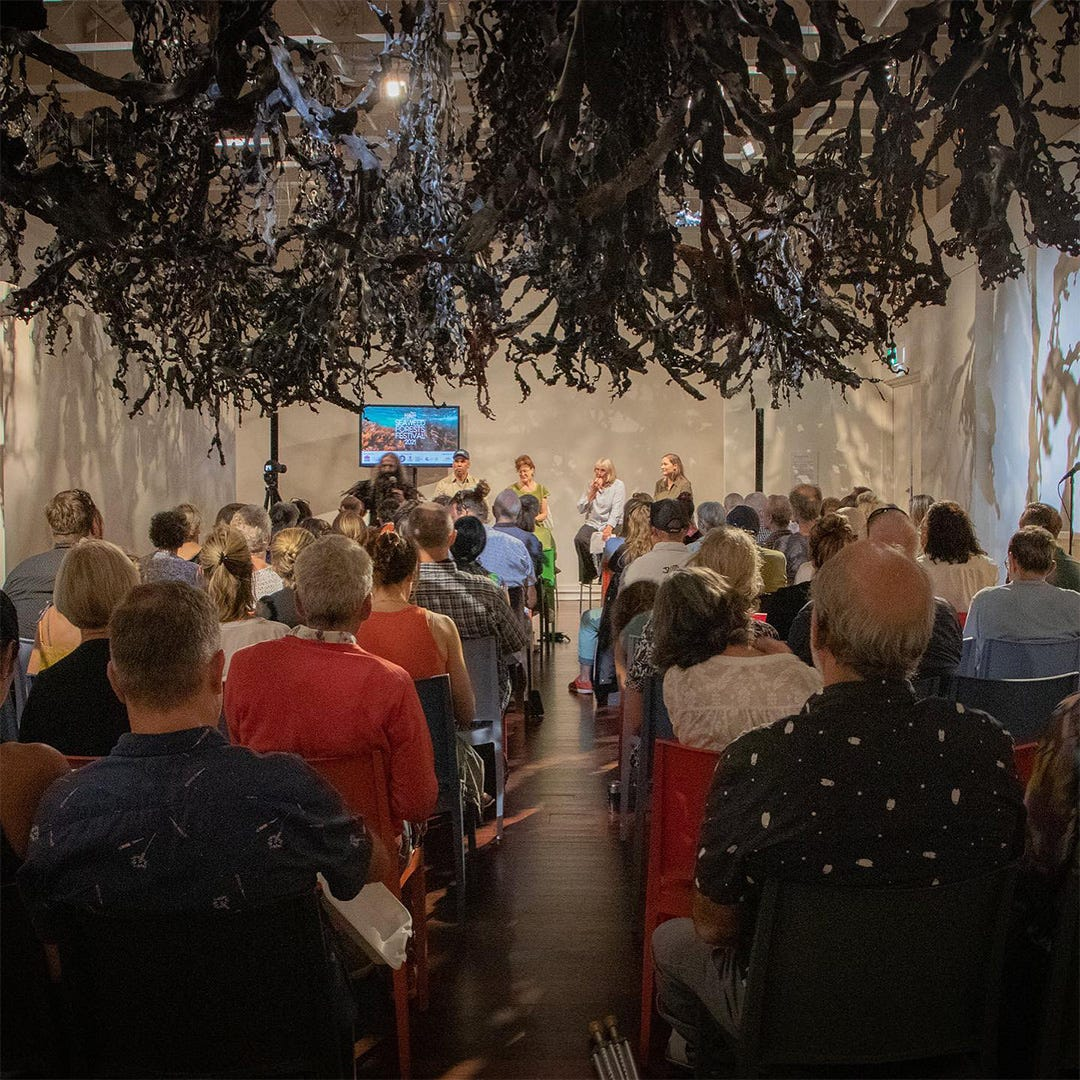 What is the Seaweed Forests Festival?