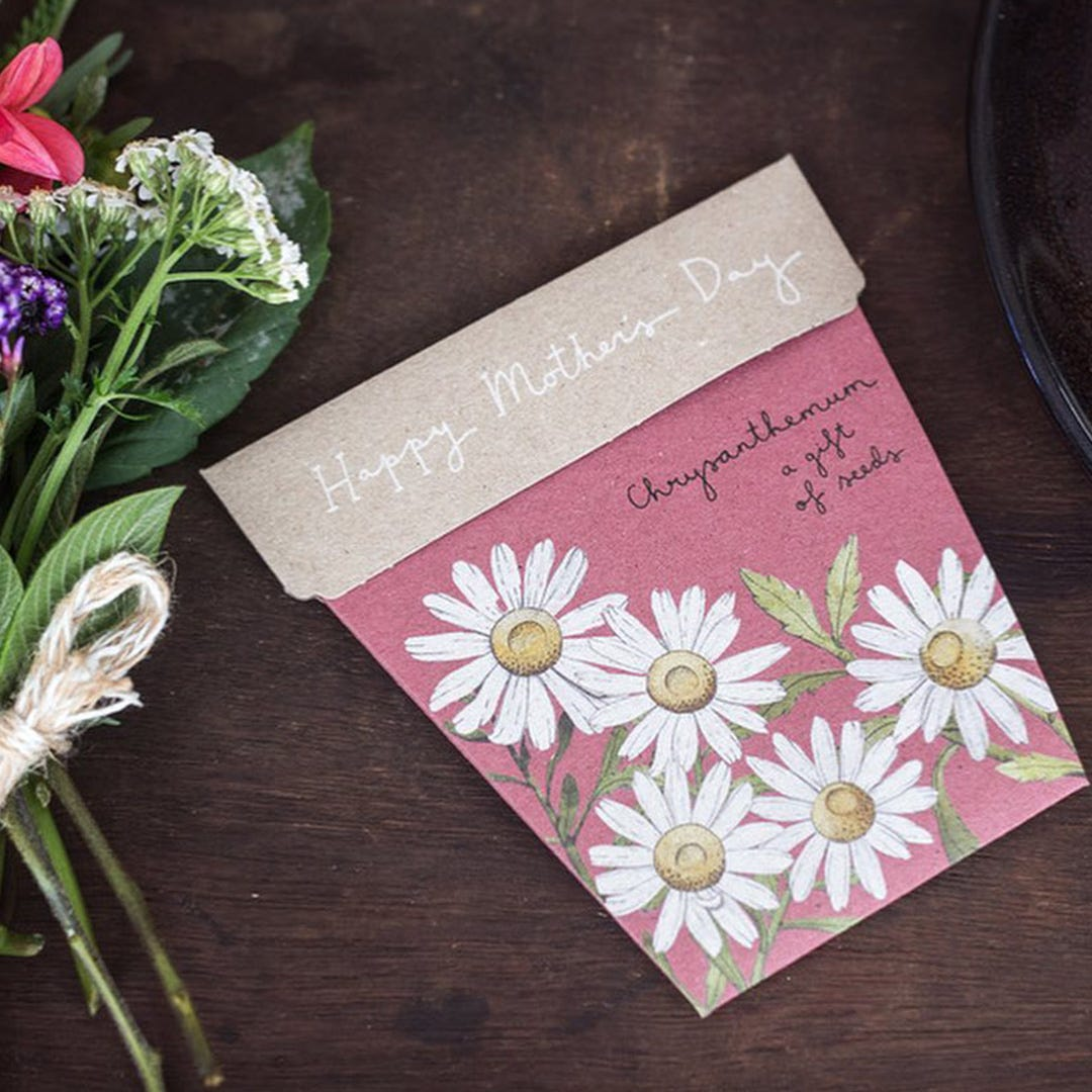Sow n Sow Gift of Seeds Mother's Day - Chrysanthemum