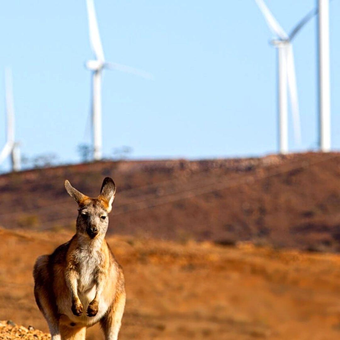Western Australia Renewable Energy