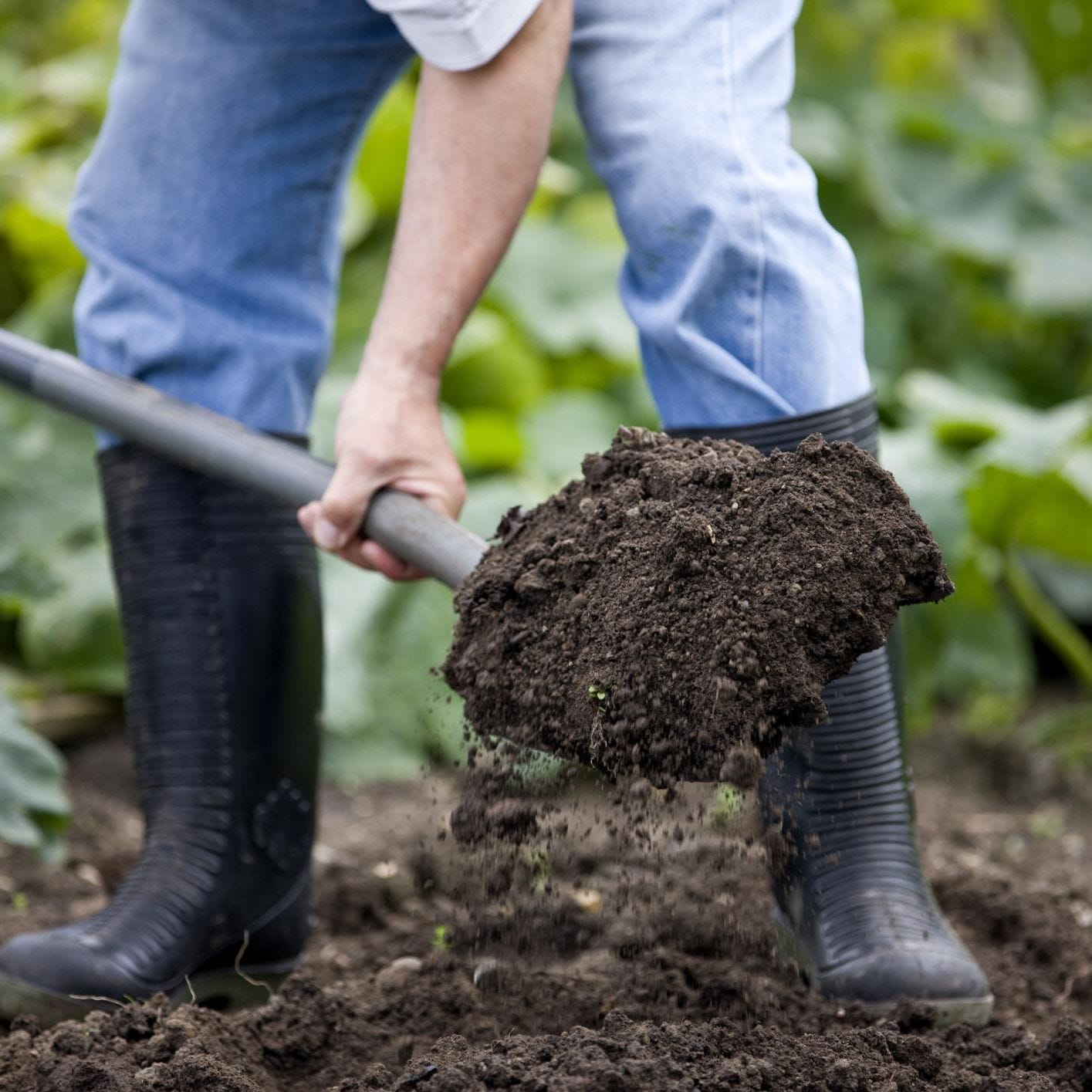 Cut down your emissions by composting