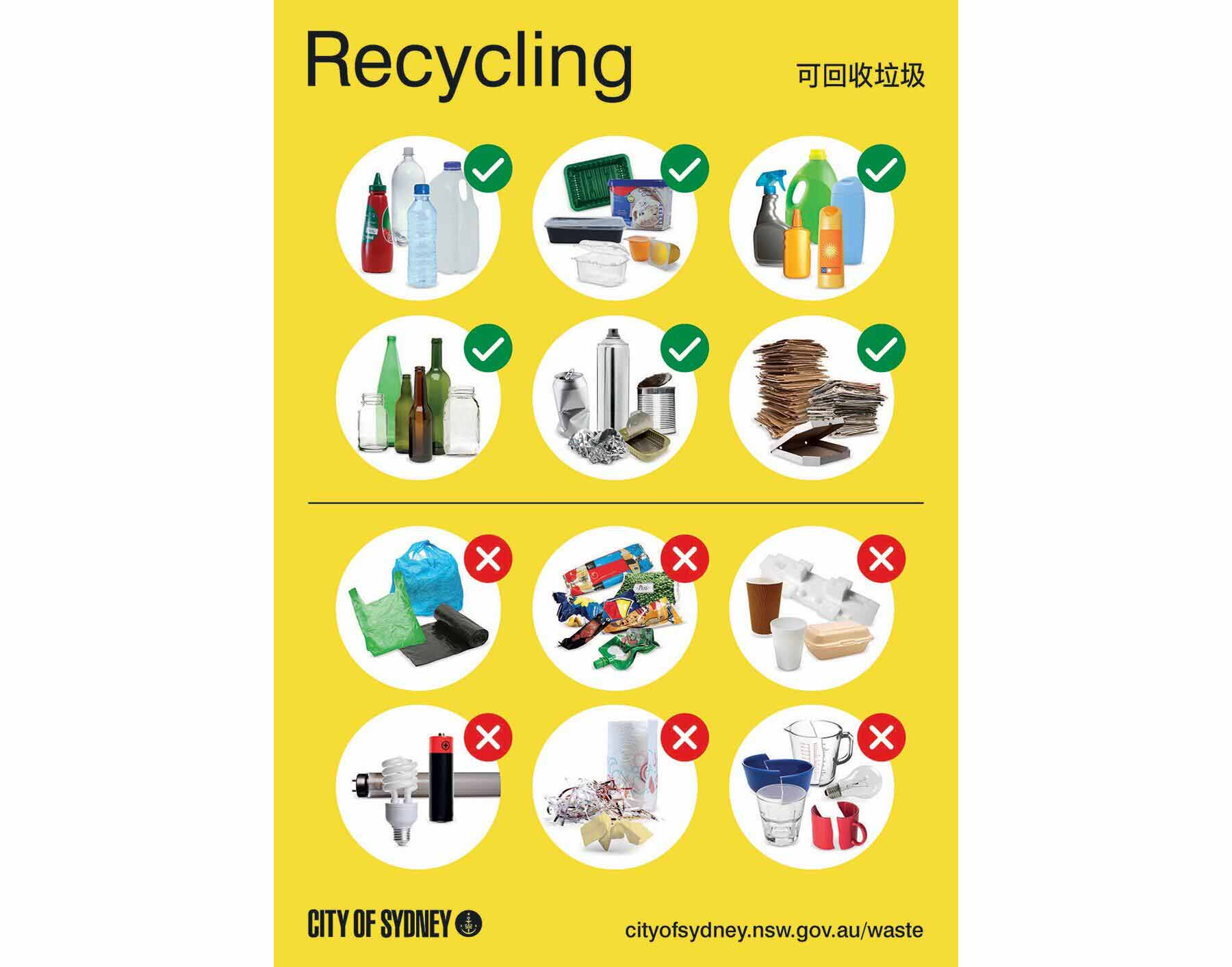 Recycling 101 - What Can You Recycle?