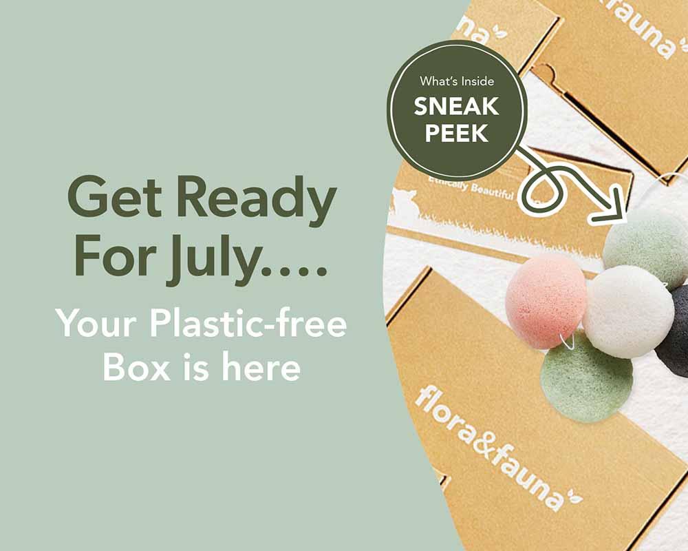 Grab your Plastic Free Box