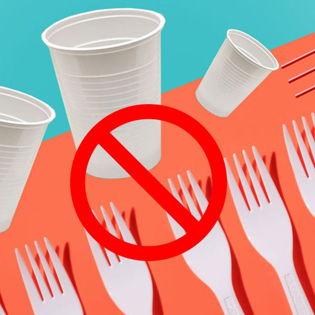 Which countries have banned single-use plastics?