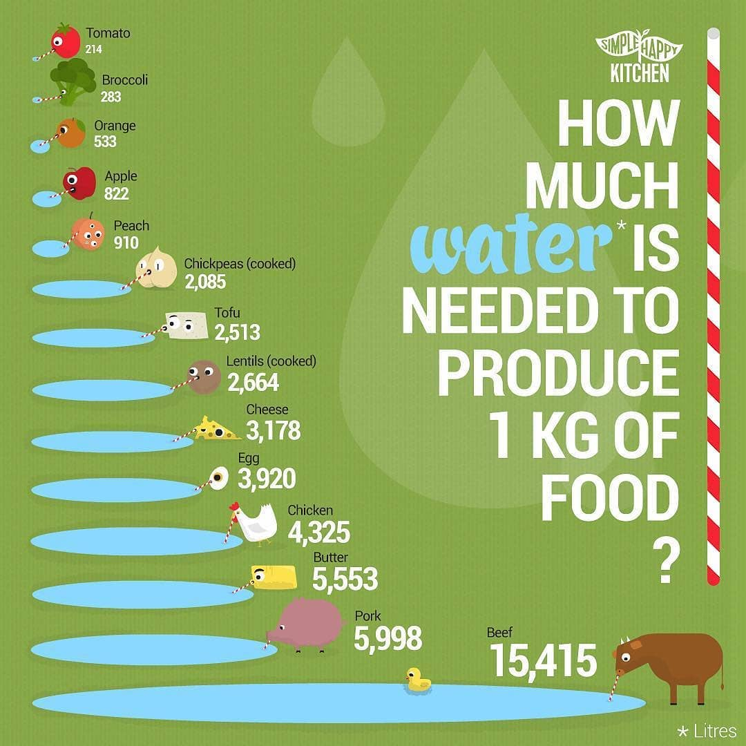 Water needed to produce 1kg of food